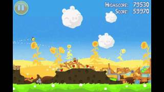 Angry Birds Seasons Summer Pignic Level 9 Walkthrough 3 Star
