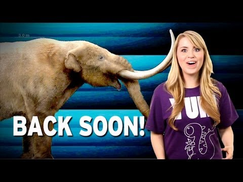 extinct - SOURCEFED SHIRTS!!! http://dft.ba/-4EpA Scientists are in talks of bringing back 24 extinct animals. Our Sources: http://dft.ba/-5jCG More stories at: http:/...