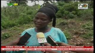 Cereal growers in the Sunyani West District of Brong-Ahafo say the agro-chemicals supplied to them to fight Army Worms have not been effective. They are therefore calling on the authorities to change the chemicals.