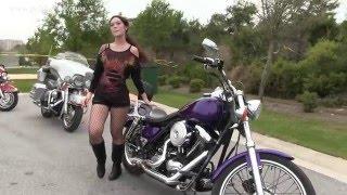 10. 1999 Harley Davidson FXR2 Dyna Superglide for sale in Alabama