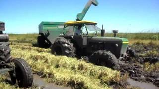 Video cosecha de arroz en corrientes MP3, 3GP, MP4, WEBM, AVI, FLV November 2018