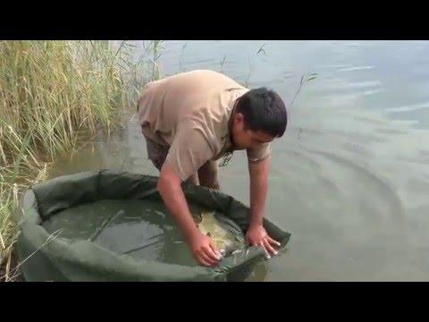 рыбалка в октябре на абакане