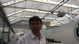 #758 Plantarium 2012 - Ilex der bessere Buchs