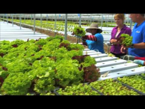 Maryland Farm & Harvest: Coming up on Episode 104
