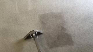 Maghull carpet clean