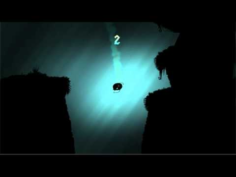Video of Shadow Fish