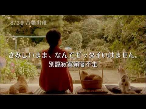 預告《吉貓出租》今年最暖人心扉的療癒系電影!