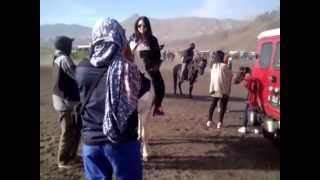 Video Persiapan naik kuda menuju Gunung Bromo MP3, 3GP, MP4, WEBM, AVI, FLV Desember 2017