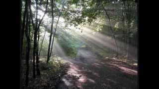 世界樹の迷宮シリーズ迷宮BGM集Ⅰ~Ⅳ