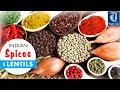 The Indian SPICES (Masala) n Lentils Names in English to Hindi, Marathi Oriya and Telugu (Part 1)