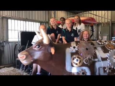 The Archibull Prize - Beaudesert State High School shares their journey