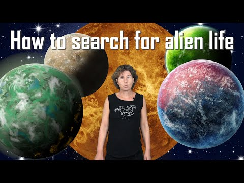 Current and Upcoming Searches for Extraterrestrial Life