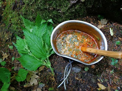 Nettle Soup | Backpack Camp Meal Recipe Cooking