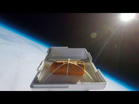 Sending Garlic Bread To The Edge Of Space