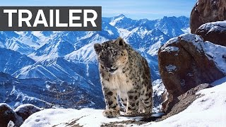 Download Youtube: Planet Earth II: Official Extended Trailer - BBC Earth