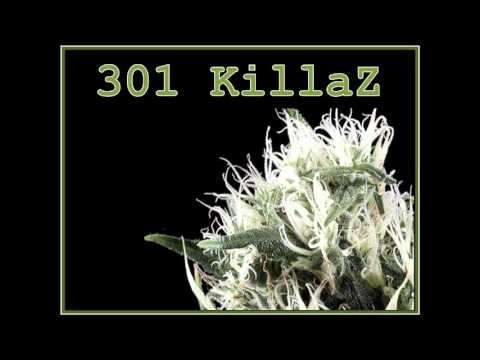 301killaz - This song Isnt done.