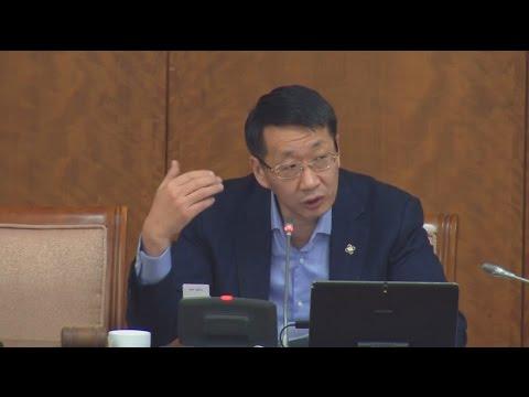 Н.Учрал: Дэлхий нийтийн чиг хандлагад нийцсэн заалтууд орсонд талархаж байна