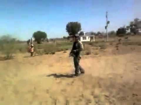 ... ver video decapitacion a sangre fria simulando rally con motosierra