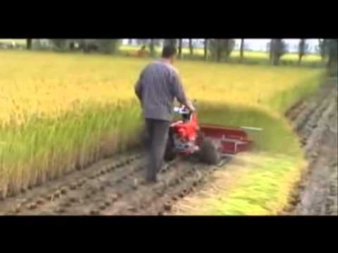 WHEAT, RICE & TILLING...1 MACHINE MULTI FUNCTIONS...