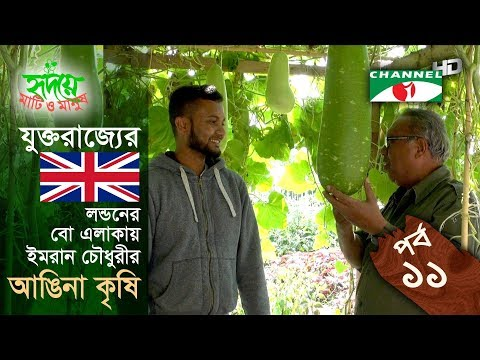 লন্ডনে আঙিনা কৃষি  | EPISODE 11 | Shykh Seraj | Channel i |