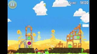 Angry Birds Seasons Summer Pignic Level 20 Walkthrough 3 Star