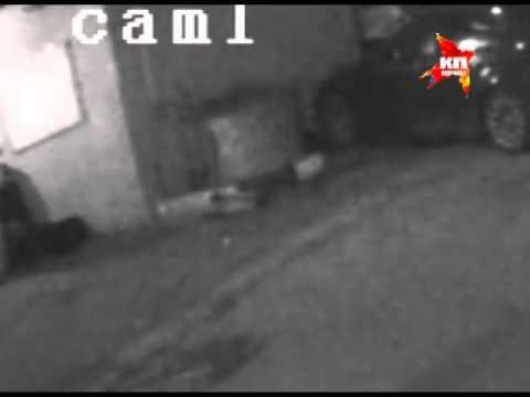 В Москве молодая пара перерезала горло собаке
