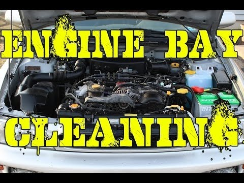 How to Clean Your Engine Bay | Quick Easy Effective