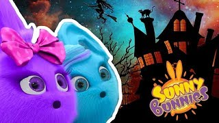 Download Video Cartoons for Children | SUNNY BUNNIES - SPOOKY HALLOWEEN | Funny Cartoons For Children MP3 3GP MP4