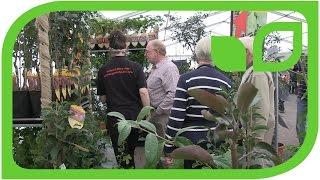Das Lubera Team in Malvern - ein Beispiel für zukünftige Generationen