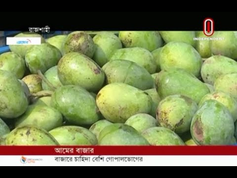 Gopalbhog favorite, Himsagar cheaper (26-05-2019) Courtesy: Independent TV