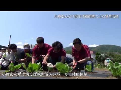小樽あんかけ焼そば親衛隊-食育活動「桂岡小学校との白菜苗植え体験」