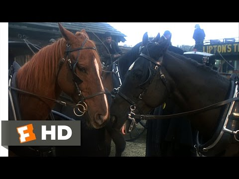Black Beauty (1994) - My Precious Friend Scene (9/10) | Movieclips