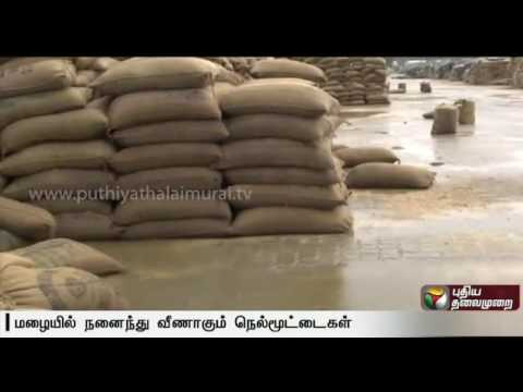 Stacked-rice-bags-kept-on-open-ground-gets-damaged-due-to-rain-and-heat-in-Chengalpattu