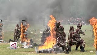Video Harapan Prabowo saat HUT Kopassus ke-67 MP3, 3GP, MP4, WEBM, AVI, FLV April 2019