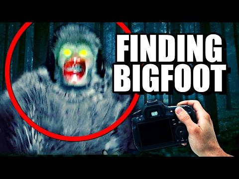 Bigfoot and sasquatch hairs no match for dna analysis