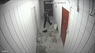 Video Dumb Criminal Caught in Trap by Owner MP3, 3GP, MP4, WEBM, AVI, FLV Maret 2019