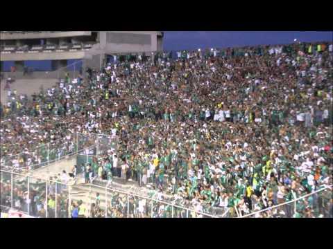 Verde solo hay uno y es del Valle | Deportivo Cali 3-1 Nacional - Frente Radical Verdiblanco - Deportivo Cali - Colombia - América del Sur