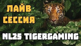 dima23 @ NL25, TigerGaming