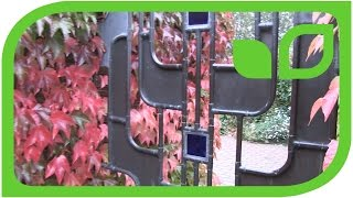 Impressionen: Deko-Obst Dekoration im Park van Appeltern