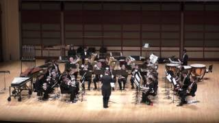 Triangle Youth Academy Brass Band 2016