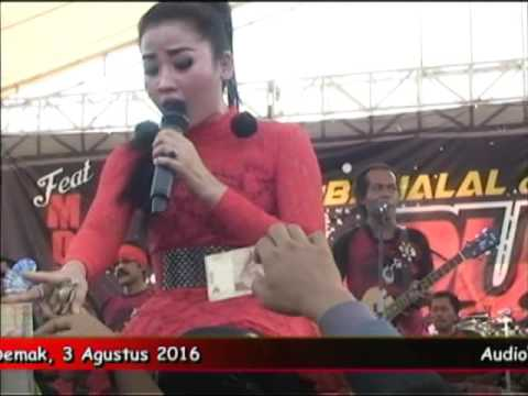 Video 05 Kimcil kepolen   Nasha Aqila MONATA Live AL DUGAL Community 2016 download in MP3, 3GP, MP4, WEBM, AVI, FLV February 2017