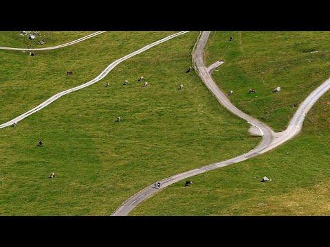Ελβετία: Πρωτοφανές κύμα καύσωνα απειλεί τα ζώα