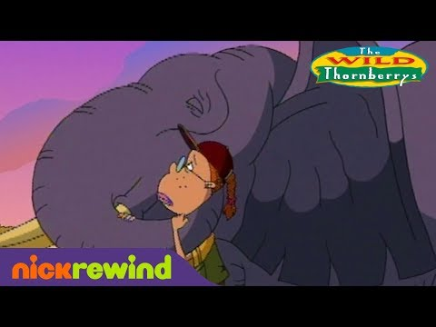Rebecca the Elephant Rests in Peace | The Wild Thornberrys | NickRewind