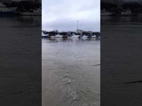 Pescara, la pompa dell'Aca sversa liquami nel porto VIDEO