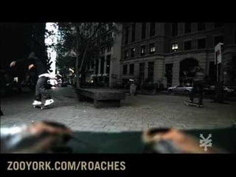 ZOO FREAK'N YORK - Zoo York Talking Roaches! (видео)