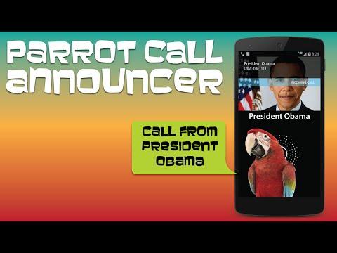 Video of Parrot Announcer - Call Talker