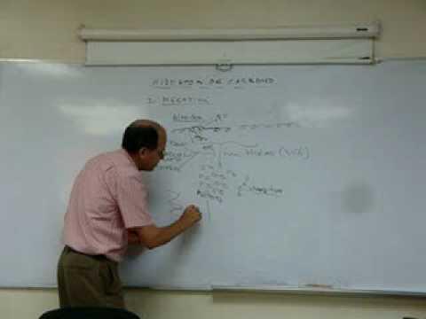 Nutriologia Clinica, NUTRICION Y METABOLISMO II.
