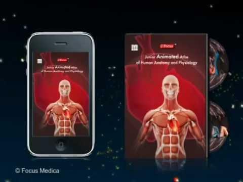 Video of Anatomy Atlas-Junior