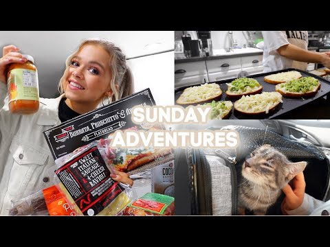 Trader Joe's Shopping + Haul, Bailey Get's Surgery & Fancy Grilled Cheese Night