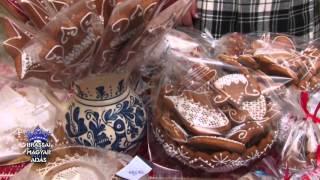 Emisiunea in lb maghiara la minutul 46:06 despre Konya Noemi